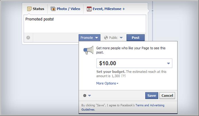 Facebook Marketing Promoted Posts