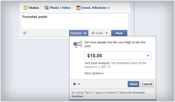 Facebook Marketing Promoted Posts
